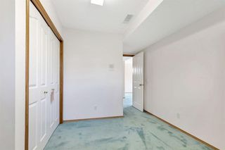 Photo 28: 236 CORAL SPRINGS Place NE in Calgary: Coral Springs Detached for sale : MLS®# A1019193