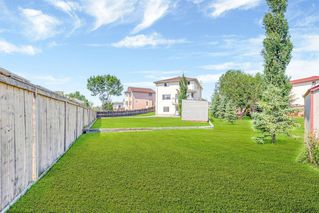 Photo 32: 236 CORAL SPRINGS Place NE in Calgary: Coral Springs Detached for sale : MLS®# A1019193