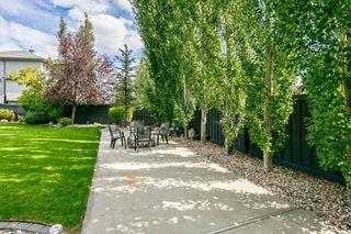 Photo 31: 2822 TERWILLEGAR Wynd in Edmonton: Zone 14 House for sale : MLS®# E4210464