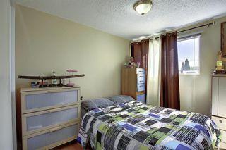 Photo 14: 3906 29A Avenue SE in Calgary: Dover Duplex for sale : MLS®# A1031783