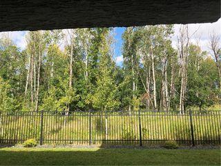Photo 20: 213 Oak Lawn Road in Winnipeg: Bridgwater Forest Residential for sale (1R)  : MLS®# 1924628