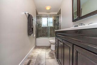 Photo 14: 7719 106A Avenue in Edmonton: Zone 19 House for sale : MLS®# E4183024