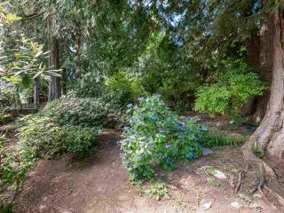 Photo 23: 7639 EUREKA Avenue in Halfmoon Bay: Halfmn Bay Secret Cv Redroofs House for sale (Sunshine Coast)  : MLS®# R2488854