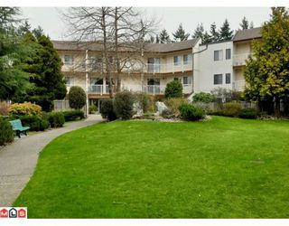 """Photo 13: 204 12890 17TH Avenue in Surrey: Crescent Bch Ocean Pk. Condo for sale in """"OCEAN PARK PLACE"""" (South Surrey White Rock)  : MLS®# F1003860"""