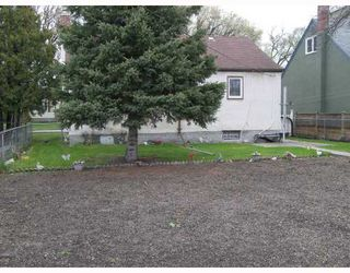 Photo 6: 270 CHELSEA Avenue in WINNIPEG: East Kildonan Residential for sale (North East Winnipeg)  : MLS®# 2909881