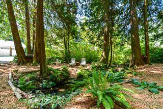 Photo 14: 16 CLOVERMEADOW Crescent in Langley: Salmon River House for sale : MLS®# R2395332