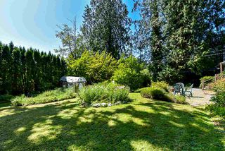 Photo 13: 16 CLOVERMEADOW Crescent in Langley: Salmon River House for sale : MLS®# R2395332