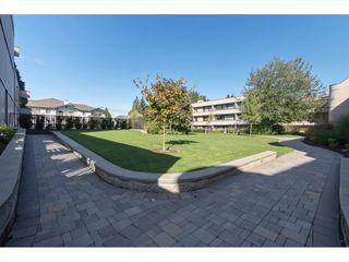"Photo 19: 308 15313 19 Avenue in Surrey: King George Corridor Condo for sale in ""Village Terrace"" (South Surrey White Rock)  : MLS®# R2406758"