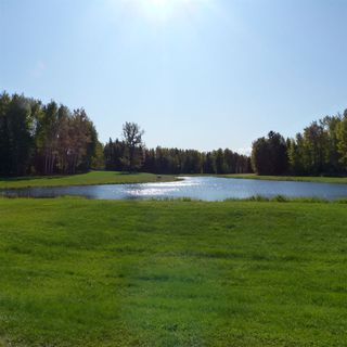 Photo 25: 55001 Twp 465: Rural Wetaskiwin County Cottage for sale : MLS®# E4175004