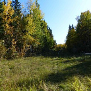 Photo 12: 55001 Twp 465: Rural Wetaskiwin County Cottage for sale : MLS®# E4175004