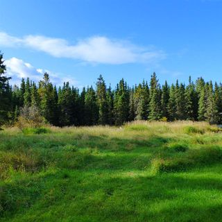 Photo 8: 55001 Twp 465: Rural Wetaskiwin County Cottage for sale : MLS®# E4175004