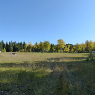 Photo 23: 55001 Twp 465: Rural Wetaskiwin County Cottage for sale : MLS®# E4175004
