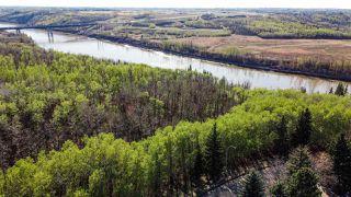 Photo 8: 411 HEFFERNAN Drive in Edmonton: Zone 14 House for sale : MLS®# E4197495