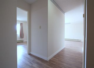"Photo 14: 105 8725 ELM Drive in Chilliwack: Chilliwack E Young-Yale Condo for sale in ""ELMWOOD TERRACE"" : MLS®# R2464677"