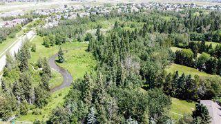 Photo 4: 43 BLACKBURN Drive in Edmonton: Zone 55 House for sale : MLS®# E4204537