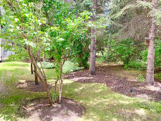 Photo 45: 43 BLACKBURN Drive in Edmonton: Zone 55 House for sale : MLS®# E4204537