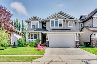 Main Photo: 22 ELGIN ESTATES Grove SE in Calgary: McKenzie Towne Detached for sale : MLS®# A1019563
