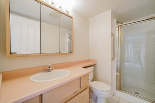 "Photo 11: 116 5360 205 Street in Langley: Langley City Condo for sale in ""Parkway Estates"" : MLS®# R2491402"