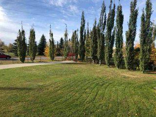 Photo 28: 104 161 Avenue in Edmonton: Zone 51 House for sale : MLS®# E4216336