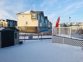 Photo 29: 3097 CARPENTER Landing in Edmonton: Zone 55 House for sale : MLS®# E4178050