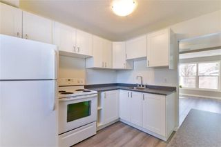 Photo 7: 318 Houde Drive in Winnipeg: St Norbert Residential for sale (1Q)  : MLS®# 1931197