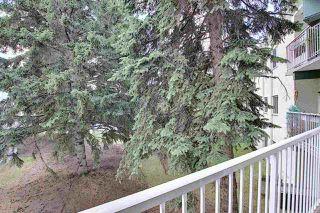 Photo 17: 218 5730 RIVERBEND Road in Edmonton: Zone 14 Condo for sale : MLS®# E4202784