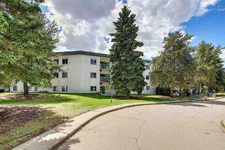 Photo 24: 218 5730 RIVERBEND Road in Edmonton: Zone 14 Condo for sale : MLS®# E4202784