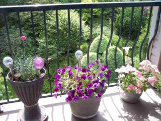 """Photo 14: 415 3172 GLADWIN Road in Abbotsford: Central Abbotsford Condo for sale in """"Regency Park"""" : MLS®# R2480665"""