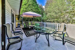 Photo 5: 19371 HAMMOND Road in Pitt Meadows: Central Meadows House for sale : MLS®# R2481575