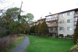 Photo 2: 101 79 W Gorge Rd in : SW Gorge Condo Apartment for sale (Saanich West)  : MLS®# 814822