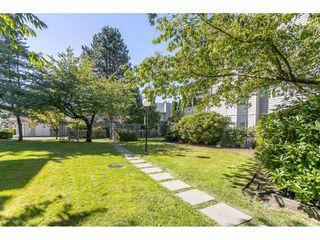 Photo 20: 203 9948 151 STREET in Surrey: Guildford Condo for sale (North Surrey)  : MLS®# R2491519