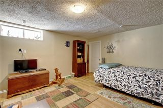 Photo 26: 1130 MARTINDALE Boulevard NE in Calgary: Martindale Detached for sale : MLS®# C4261187