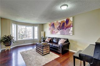 Photo 17: 1130 MARTINDALE Boulevard NE in Calgary: Martindale Detached for sale : MLS®# C4261187