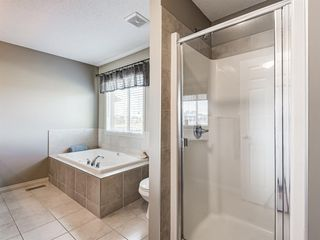 Photo 18: 415 Coopers Drive SW: Airdrie Detached for sale : MLS®# A1043471