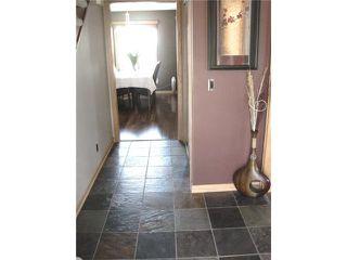 Photo 12: 144 KIRKBRIDGE Drive in WINNIPEG: Fort Garry / Whyte Ridge / St Norbert Residential for sale (South Winnipeg)  : MLS®# 1016371