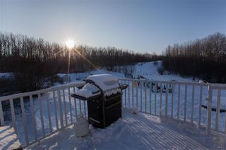 Photo 50: 23 27507 TWP RD 544: Rural Sturgeon County House for sale : MLS®# E4184493