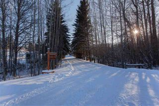 Photo 36: 23 27507 TWP RD 544: Rural Sturgeon County House for sale : MLS®# E4184493