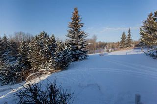 Photo 34: 23 27507 TWP RD 544: Rural Sturgeon County House for sale : MLS®# E4184493