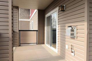Photo 26: 357 2096 BLACKMUD CREEK Drive in Edmonton: Zone 55 Condo for sale : MLS®# E4186408