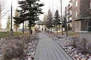 Photo 30: 357 2096 BLACKMUD CREEK Drive in Edmonton: Zone 55 Condo for sale : MLS®# E4186408