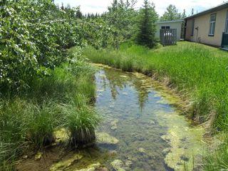 Photo 23: 82 200 4 Avenue SW: Sundre Land for sale : MLS®# C4299239