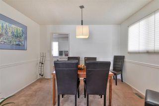 Photo 14: 24 WESTRIDGE Crescent in Edmonton: Zone 22 House for sale : MLS®# E4199716