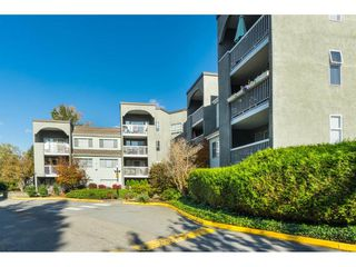 Photo 1: 104 5700 200 STREET in Langley: Langley City Condo for sale : MLS®# R2413141