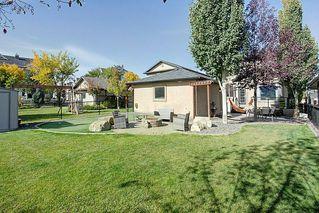 Photo 30: 292 ELGIN Way SE in Calgary: McKenzie Towne Detached for sale : MLS®# C4280970