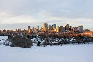Photo 45: 5 9745 92 Street in Edmonton: Zone 18 Townhouse for sale : MLS®# E4187479
