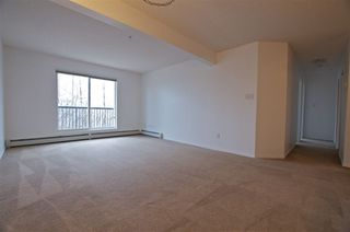 Photo 9: 103 1188 HYNDMAN Road in Edmonton: Zone 35 Condo for sale : MLS®# E4195773