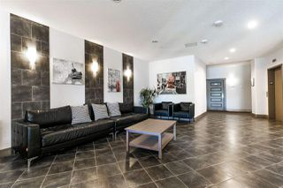 Photo 5: 339 7825 71 Street in Edmonton: Zone 17 Condo for sale : MLS®# E4201268