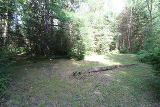 Photo 17: 300 Pinery Road in Kawartha Lakes: Rural Somerville Property for sale : MLS®# X4840235