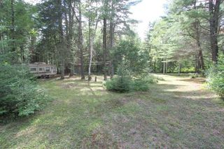 Photo 15: 300 Pinery Road in Kawartha Lakes: Rural Somerville Property for sale : MLS®# X4840235