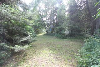 Photo 19: 300 Pinery Road in Kawartha Lakes: Rural Somerville Property for sale : MLS®# X4840235